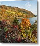 Autumn Along The Hudson Metal Print