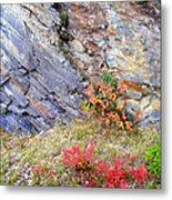 Autumn And Rocks Metal Print