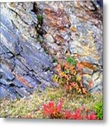 Autumn And Rocks Vertical Metal Print