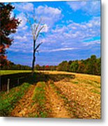 Autumn And The Tree Metal Print