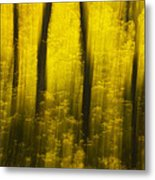 Autumn Apparitions Metal Print by Peter Coskun