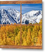 Autumn Aspen Tree Forest Barn Wood Picture Window Frame View Metal Print by James BO  Insogna