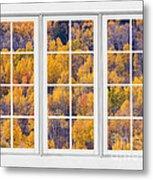 Autumn Aspen Trees White Picture Window View Metal Print