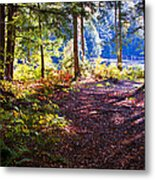 Autumn At Cary Lake Metal Print