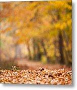 Autumn At Great Falls Metal Print