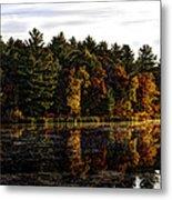 Autumn At It's Finest 2 Metal Print