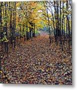 Autumn At Mono Cliffs Metal Print
