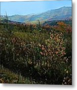 Autumn At Mt Rogers Metal Print