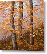 Autumn At Tishomingo State Park Metal Print