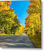 Autumn Back Road Metal Print