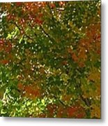 Autumn  Banner Metal Print
