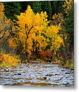Autumn Beauty In Boise County Metal Print