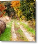 Autumn Beauty On Rural Dirt Road Metal Print