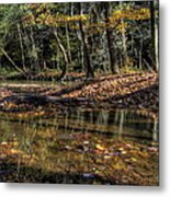 Autumn Beauty Scene Metal Print