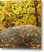 Autumn Boulder And Leaves Metal Print