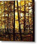 Autumn Bridge I Metal Print