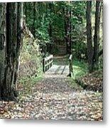 Autumn Bridge Metal Print