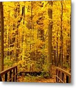 Autumn Bridge V Metal Print