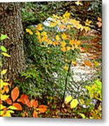 Autumn By A Pennsylvania Mountain Stream Digital Art Metal Print