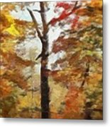 Autumn Canvas Metal Print