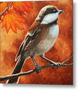 Autumn Chickadee Metal Print by Crista Forest