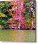Autumn Color In Norfolk Botanical Garden 1 Metal Print