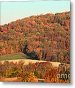 Autumn Color On Rolling Hills Metal Print