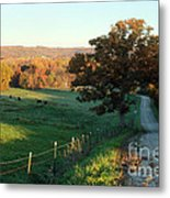 Autumn Color On Rolling Hills And Farmland Metal Print