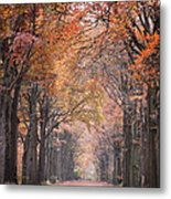 Autumn - Colorful Red Green Orange Nature Landscape Fine Art Photography Metal Print by Artecco Fine Art Photography