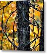Autumn Colors 1 Metal Print