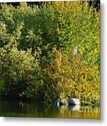 Autumn Colors 1 Metal Print