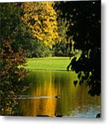 Autumn Colors 2 Metal Print