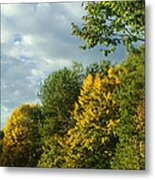 Autumn Colors 6 Metal Print