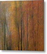 Autumn Colors IIi Metal Print