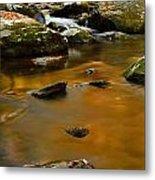 Autumn Colors On Little River Metal Print
