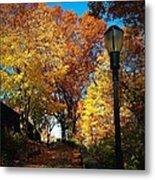 Autumn Colors Metal Print