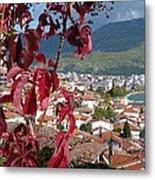 Autumn Colour - Ohrid - Macedonia Metal Print