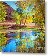 Autumn Colours In Moab Metal Print
