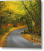 Autumn Colours Metal Print by Stephen Dowdell