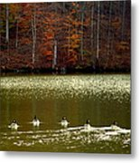 Autumn Cove Metal Print