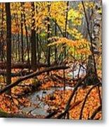Autumn Creek In The Rain Metal Print