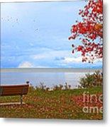 Autumn Metal Print by Dipali S