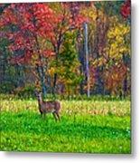 Autumn Doe - Paint Metal Print