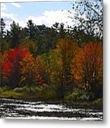 Autumn Dreaming Adwc Metal Print