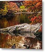Autumn Duck Couple Metal Print