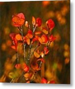 Autumn Emblem Metal Print