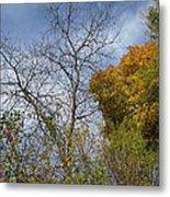 Autumn Ending Metal Print