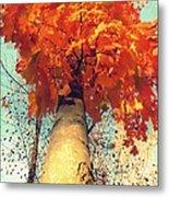 Autumn Fantasy 1 Metal Print