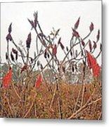Autumn Fields Metal Print