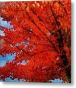 Autumn Fire Metal Print